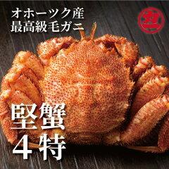 オホーツク産【四特】毛ガニ 570g前後