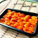 【ふるさと納税】20-135 冷凍エゾバフンウニ100g×2