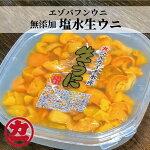 【ふるさと納税】10-183エゾバフンウニ【塩水生ウニ100g】