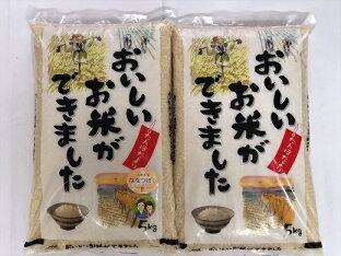 【ふるさと納税】【令和2年産】北海道名寄市産 ゆめぴりか5kg・ななつぼし5kg お米食べ比べセット ※2020年11月〜2021年3月頃に順次発送予定の画像