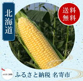 【ふるさと納税】北海道名寄産スイートコーン(黄)Lサイズ11本