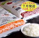 【ふるさと納税】JR015025 ゆめぴりか・ふっくりんこ食...
