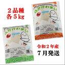 【ふるさと納税】JR014051 ふっくりんこ・ななつぼし食...