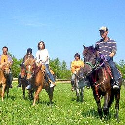 【ふるさと納税】登別ホースパーク遊駿 体験乗馬コース利用券(約30分、1名様分) 【体験チケット】