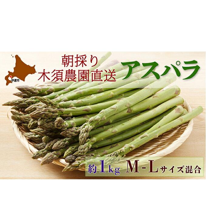 【ふるさと納税】伊達【木須農園】の採れたてグリーンアスパラ約1kg 【アスパラガス・野菜】 お届け:2021年5月中旬〜6月下旬まで