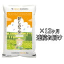【ふるさと納税】新しのつ米「ななつぼし」5kg×12カ月連続...