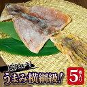 【ふるさと納税】北海道 福島町 横綱するめ5枚いり(8号、9...