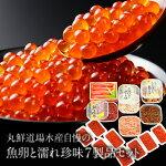 【ふるさと納税】丸鮮道場水産自慢の魚卵と濡れ珍味7製品セット(計1.76kg)M24
