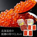 【ふるさと納税】2つ味で満喫!北海道産の鮭鱒の卵づくしセット(計1kg)M17