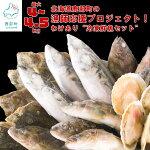 【ふるさと納税】北海道鹿部町の漁師応援プロジェクト!冷凍鮮魚セット(4.5~5kg)[わけあり〕