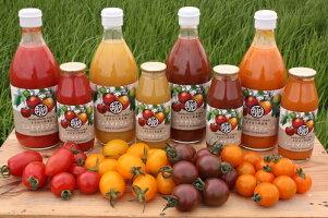 【ふるさと納税】まるほり野菜園カラフルミニトマトジュースセットA