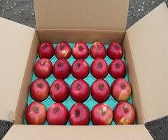 【ふるさと納税】三木田果樹園りんごセット