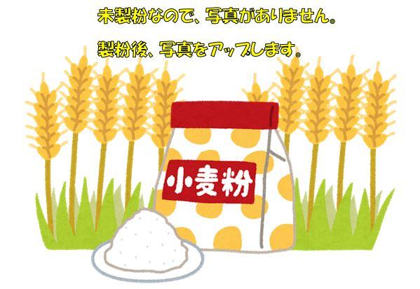 岩崎農園 小麦粉ギフトB