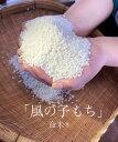 【ふるさと納税】命米(R) もち米 風の子もち20kg