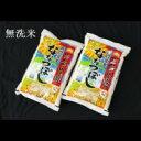【ふるさと納税】 1311 無洗米ななつぼし5kg×2袋