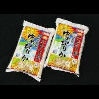 ゆめぴりか 北海道産 5kg×2袋 10kg