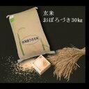 【ふるさと納税】 2201 玄米おぼろづき30kg×1袋
