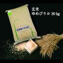 【令和2年度産】【ふるさと納税】 2701 玄米ゆめぴりか3...