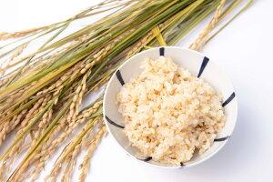 【ふるさと納税】【玄米】令和2年産助安農場のゆめぴりかとななつぼし(各5kg)