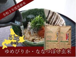 【ふるさと納税】ゆめぴりか玄米