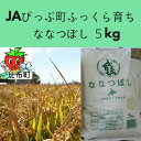 【ふるさと納税】JAぴっぷ町 ななつぼし 精米5kg