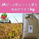 【ふるさと納税】JAぴっぷ町 ゆめぴりか 精米5kg