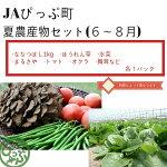 【ふるさと納税】JAぴっぷ町夏農産物セット