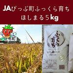 【ふるさと納税】JAぴっぷ町ほしまる精米5kg