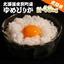 【ふるさと納税】愛別町産米(ゆめぴりか2kg×2袋)12ヶ月定期配送【A46327】