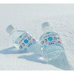【ふるさと納税】北海道大雪山ゆきのみず550ml×24本入り【1086846】