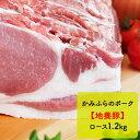 【ふるさと納税】かみふらのポーク【地養豚】ロース1.2kg