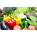 【ふるさと納税】季節の野菜&ミニトマトジュースセット 【野菜