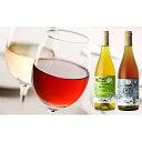【ふるさと納税】多田農園のおすすめワイン2本セット(各750