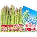【ふるさと納税】アスパラ専門農家の特選グリーンアスパラ1kg(L〜2L) 【アスパラガス・野菜・グリーンアスパラ・アスパラ・1kg】 お届け:2021年5月20日頃〜2021年6月中旬まで・・・