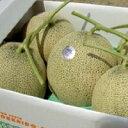 【ふるさと納税】メロン4〜5玉 秀 8kg以上(中富良野産)...