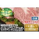 【ふるさと納税】北海道 こだわりの美深和牛1頭分(冷凍)5分割して月1回お届け 【定期便・お肉・牛肉・サーロイン・焼肉・バーベキュー】