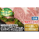 【ふるさと納税】北海道 こだわりの美深和牛1頭分(冷凍)10分割して月1回お届け 【定期便・お肉・牛肉・サーロイン・焼肉・バーベキュー】