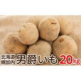 【ふるさと納税】北海道幌加内産じゃがいも(男爵)約20kg 【野菜・じゃがいも・ジャガイモ・芋】 お届け:2021年10月〜2021年12月