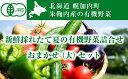 【ふるさと納税】新鮮採れたて夏の有機野菜詰合せ(大)おまかせ...