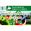 【ふるさと納税】新鮮採れたて旬の有機野菜詰合せ 年2回定期便...