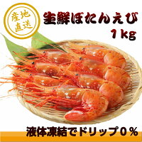 【ふるさと納税】北海道羽幌産生鮮ぼたんえび1kg