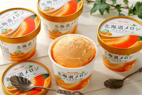 ふるさと納税 北海道メロンアイスクリーム12個セット