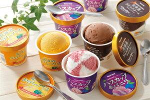 【ふるさと納税】北海道アイスクリームチョコレート・かぼちゃ・ハスカップ&バニラ各4個セット