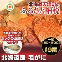 【ふるさと納税】【数量限定】北海道産毛ガニ9尾