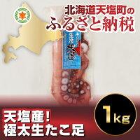 S【ふるさと納税】極上の一粒一粒!業務用白醤油たらこ(北海道加工)