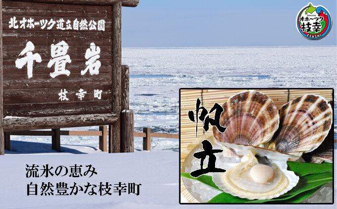 【ふるさと納税】お刺身生ほたて1kg 冷凍貝柱 オホーツク枝幸産 【加工食品・魚貝類・帆立・ほたて】