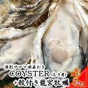 【ふるさと納税】湧別サロマ湖産かき【COYSTER(むき身)...