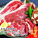 【ふるさと納税】北海道湧別産 ゆうべつ牛ステーキ・焼き肉セットB 【お肉・牛肉・ステーキ・焼肉・バーベキュー】