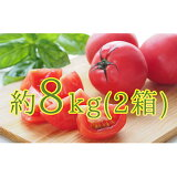 【ふるさと納税】<2021年6月上旬からお届け>約8kg!北海道壮瞥町「FARM K」の美味しい完熟トマト(約4kg×2箱) 【野菜・トマト】 お届け:2020年6月上旬〜8月下旬まで