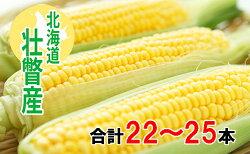 【ふるさと納税】<2021年8月初旬よりお届け>約10kg!北海道壮瞥産とうもろこし(恵味)Lサイズ25本 【野菜・とうもろこし】 お届け:2021年8月初旬〜8月末まで・・・ 画像1